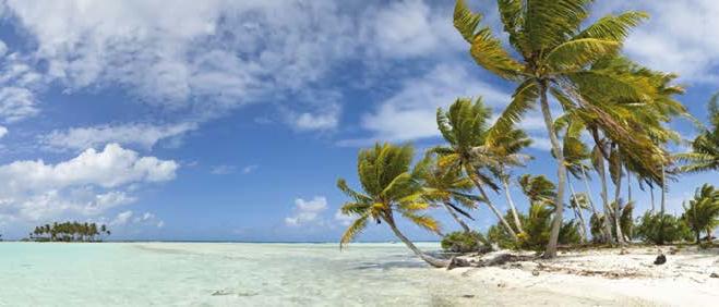 17es Journées de chirurgie-dentaire à l'île Maurice