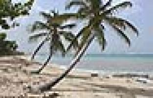 25èmes Journées aux Antilles