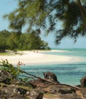 15e journées de chirurgie-dentaire à l'île Maurice